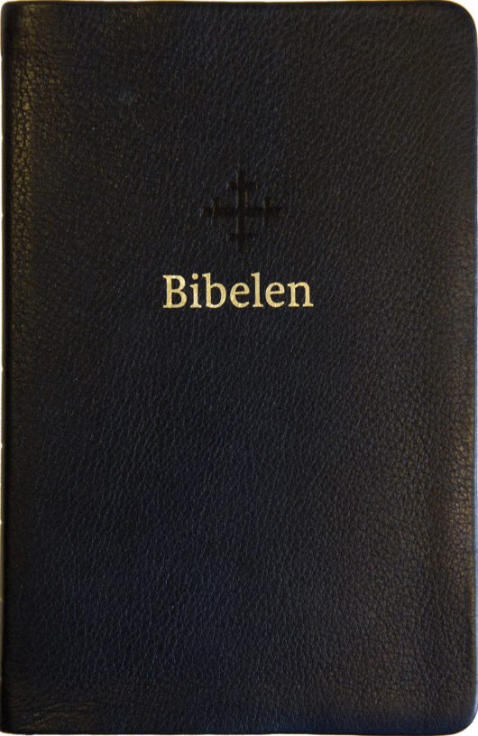Bibel 2011, mellomstor, sort skinn med register